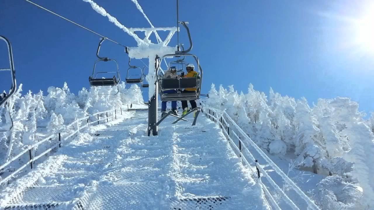 Горнолыжный курорт Shiga Kogen Mountain Resort 5