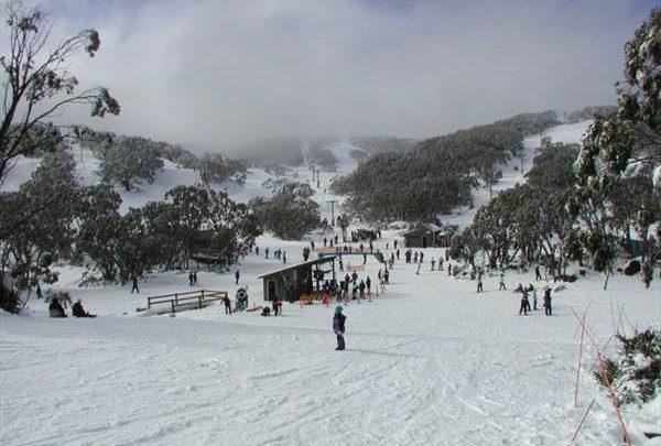 В Австралии стартовал горнолыжный сезон 1