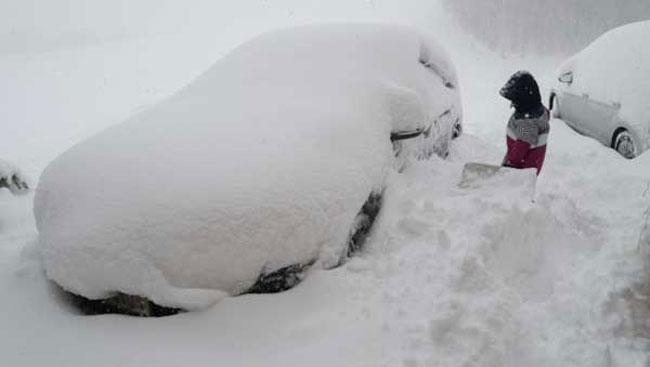 В Австрии выпадет до 1 метра снега за сутки 1