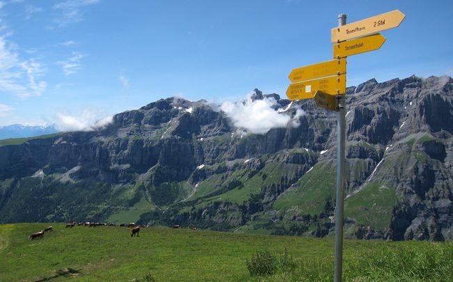 Альпийские страны хотят возобновить туризм этим летом 1